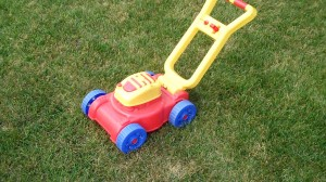 Nathan's Priceless Lawnmower